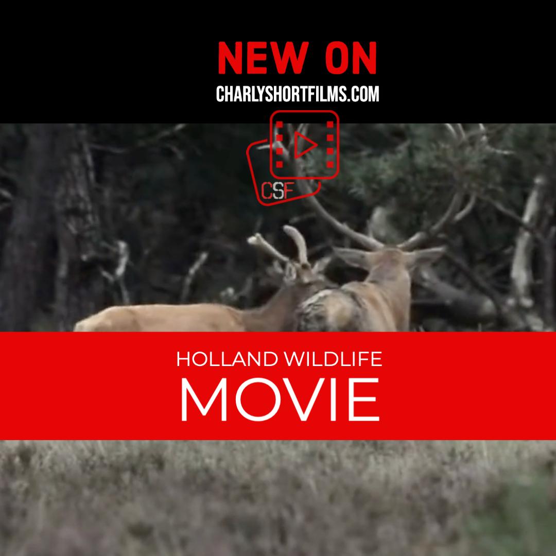 Holland Wildlife Movie