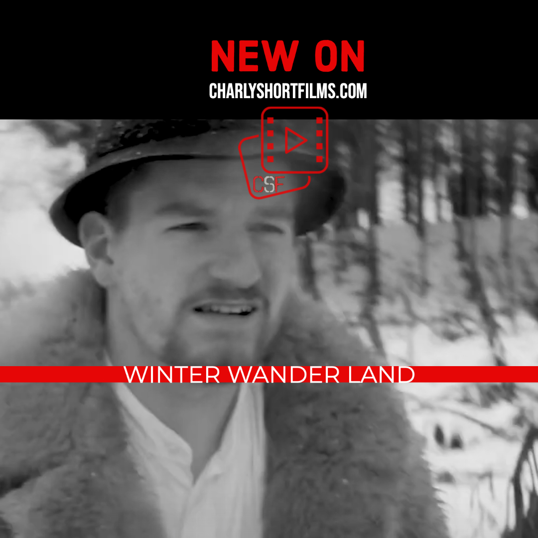 Winter Wander Land